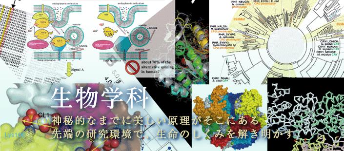 生物学科スライド01