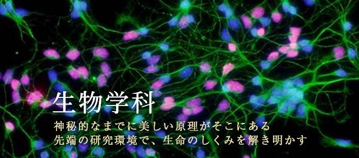 生物学科スライド3