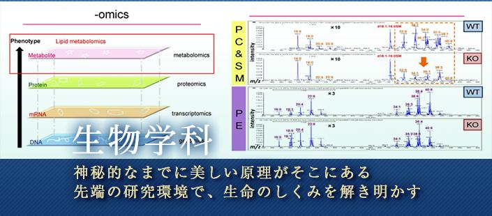 生物学科スライド5